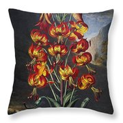 Thornton: Superb Lily Throw Pillow