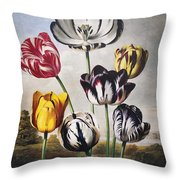 Thornton: Tulips Throw Pillow