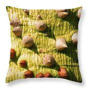 Thorntree Throw Pillow