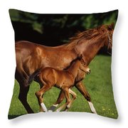 Thoroughbred Chestnut Mare & Foal Throw Pillow