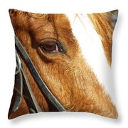 Those Big Brown Eyes Throw Pillow