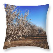 Those Country Roads Throw Pillow