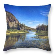Those Summer Days Throw Pillow