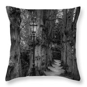 Though We Have Never Been Here Throw Pillow