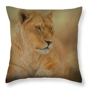 Thoughtful Lioness - Horizontal Throw Pillow