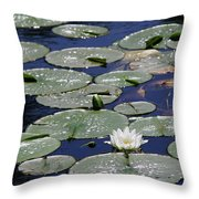 Thoughts Of Summer Throw Pillow