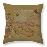 Threads Of Life Throw Pillow