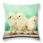 Three Amigos Throw Pillow by Amy Tyler