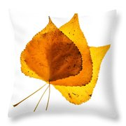 Three Backlit Cottonwood Leaves In Autumn On White Throw Pillow