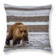 Three Bears Throw Pillow