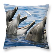 Three Bottlenose Dolphins Throw Pillow