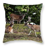 Three Bucks Throw Pillow