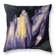 Three Buds Throw Pillow