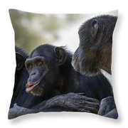 Three Chimpanzees Socializing  Throw Pillow