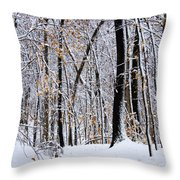 Three Creeks Conservation Area - Winter Throw Pillow