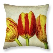 Three Dew Covered Tulips Throw Pillow