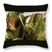 Three Different Differential Grasshoppers     July      Indiana Throw Pillow