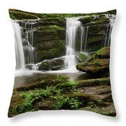 Three Falls Of Tremont Throw Pillow