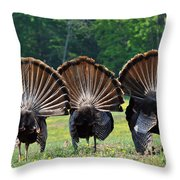 Three Fans Throw Pillow by Todd Hostetter