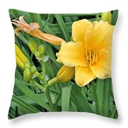 Three Flower Stages Throw Pillow