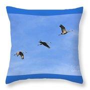 Three Flying Sandhill Cranes Throw Pillow