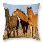 Three Foals Throw Pillow