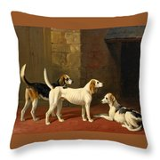 Three Fox Hounds In A Paved Kennel Yard Throw Pillow