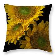 Three Golden Sunflowers Throw Pillow