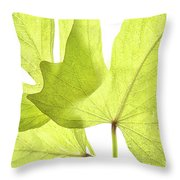 Three Green Leaves Throw Pillow
