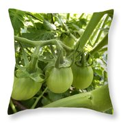 Three In A Row Green Tomatoes Throw Pillow