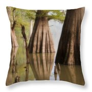 Three Kings Throw Pillow by Jonas Wingfield