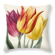 Three Lily Tulips  Throw Pillow