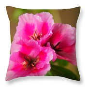 Three Little Beauties Throw Pillow