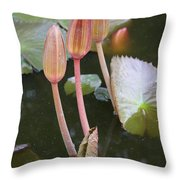 Three Lotus Buds Throw Pillow