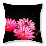Three Night Lilies  Throw Pillow