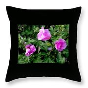 Three Of A Kind  Throw Pillow