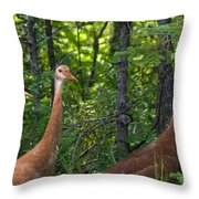 Three On A Walk Throw Pillow