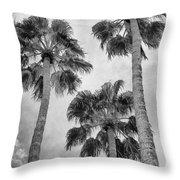 Three Palms Bw Palm Springs Throw Pillow