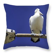 Three Pelicans On A Lamp Post Throw Pillow