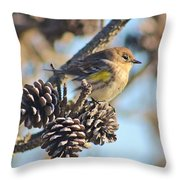 Three Pine Cones And A Little Bird Throw Pillow