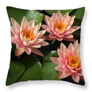 Three Pink Water Lilies Throw Pillow
