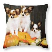 three puppy with pumpkin by Iuliia Malivanchuk Throw Pillow