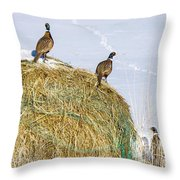 Three Roosters Throw Pillow