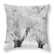 Three Snow Frosted Trees In Black And White Throw Pillow