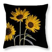 Three Sunflowers Light Painted On Black Throw Pillow