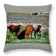Three Together Throw Pillow