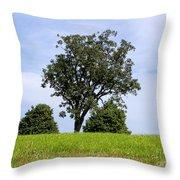 Three Tree Hill Throw Pillow