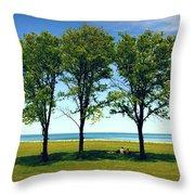 Three Trees Lake Shore Throw Pillow