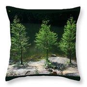 Three Trees Of Ohio Throw Pillow