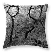 Three Trees Throw Pillow